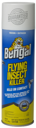 93250 SPRAY 16OZ FLYNG INSECT