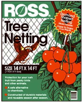 15624 ROSS TREE NET 14 X14