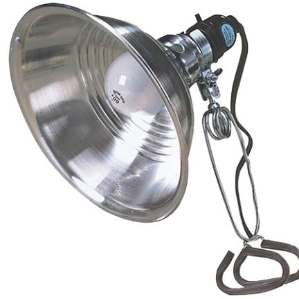 151 CLAMP LIGHT 6FT 8-1/2IN