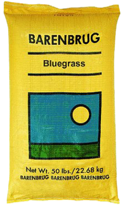 50650 50# KENTUCKY BLUE GRASS SEED