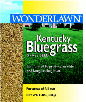 50201 1# KENTUCKY BLUEGRASS SEED