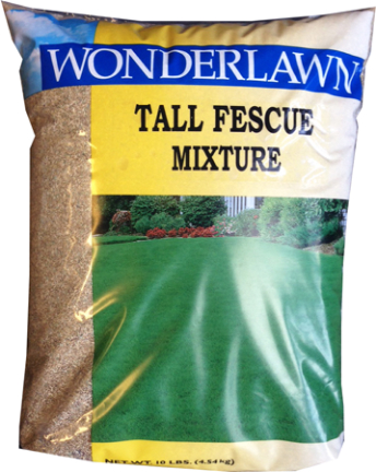 25269 GRASS SEED 3 LB TALL FESCUE